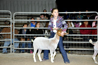Willacy County - Goat Show - 01/28/2016